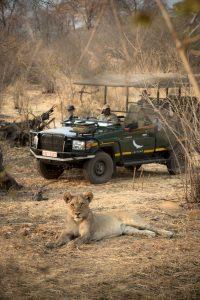 andBeyond MATETSI RIVER LODGE Zimbabwe Lion Game Drive