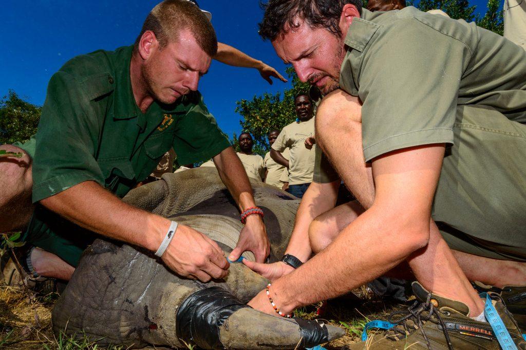 World Ranger Day segara PR Agentur münchen Tourismus