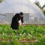 segara_pr_münchen_chiva-som_nachhaltigkeit_organic_garden_with_chef_paisarn
