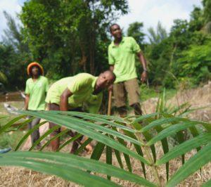 segara Kommunikation PR Agentur München Raffles Seychelles Black Parriots Praslin