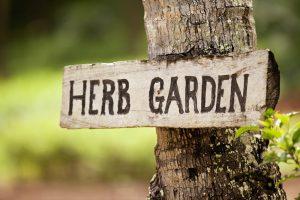 Laucala_Island_segara_PR_Agentur_München_Herb_Garden