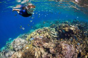 segara_PR_Agentur_München_Tourismus_andBeyond_OWB_coral_reef