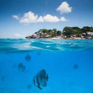 segara_PR_agentur_München_Tourismus_Raffles_Seychelles_Lifestyle_Excursions_Underwater_Snorkle (3)