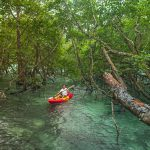 segara_PR_Agentur_München_Tourismus_Wa_Ale_activities_kayak_Scott_A_Woodard