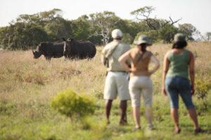 segara_PR_Agentur_München_andBeyond_Phinda_Walking_Safari