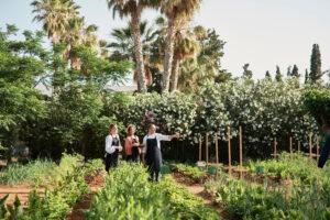 segara_PR_Agentur_München_Cretan_Malia_Park_Organic_Kitchen_Garden_7