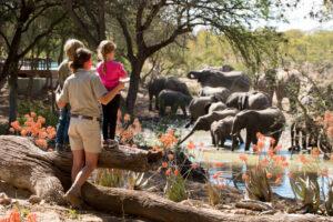 segara_PR_Agentur_München_andBeyond_Ngala_Safari_Lodge_WildChild_Programme