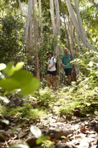 segara_PR_Agentur_München_Fregate_Island_Private_Activities_Hiking_Jungle
