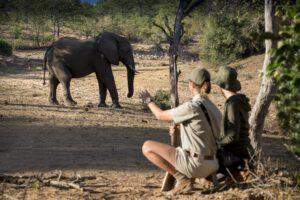 segara_PR_Agentur_München_andBeyond_Ngala_Safari_Lodge_Walking_Safari_1