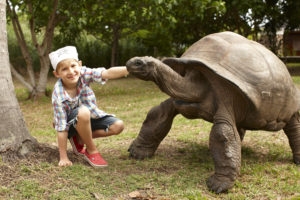 segara_PR_Agentur_München_Tourismus_Fregate_Island_Private_Family_Adventure_Pirate_Tortoise