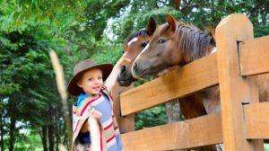 andBeyond_vira_vira_segara_PR_Agentur_München_Reiten_im_Urlaub_Wildchild_Programme_Horses