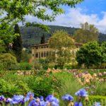 segara_PR_Agentur_München_Iris Garden - Noble Villa on the background