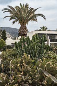 Cretan Malia Park Kreta segara Kommunikation Tourismus PR Agentur München