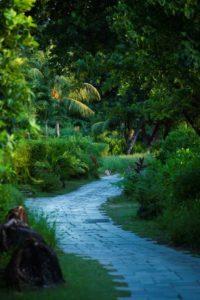 Raffles_Seychelles_segara_PR_Agentur_München_Botanical_Walk