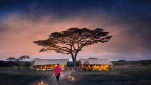 AndBeyond AFrika Baum Sonnenuntergang Zelt segara Kommunikation Tourismus Agentur München