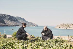 Blue Palace Kreta Phaea Program Landwirtschaft Anbau Nachhaltigkeit segara Kommunikation Tourismus PR Agentur München