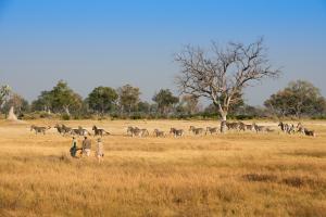 andBeyond Botswana Nxabega