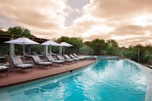 andBeyond Ngala Safari Lodge Swimming Pool View