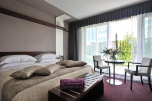 Aqualux Hotel Comfort Room
