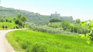 Bayerisches Pilerbüro Assisi Blick auf die Basilika San Francesco Copyright bp-Archiv