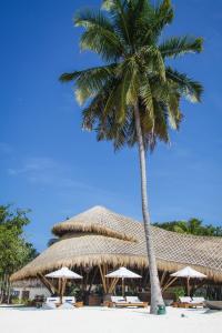 Fairmont Maldives Sirru Fen Fushi Onu Onu Bamboo Bar