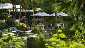 Raffles Seychelles Food Beverages Curieuse Restaurant