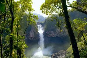 Südamerika andBeyond Südamerika Ecuador Amazonas