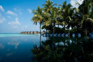 The Sun Siyam Iru Fushi Infinity Pool Reflection