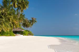 The Sun Siyam Iru Fushi beach