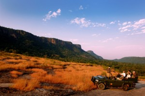andBeyond Indien Game Drive Gallery